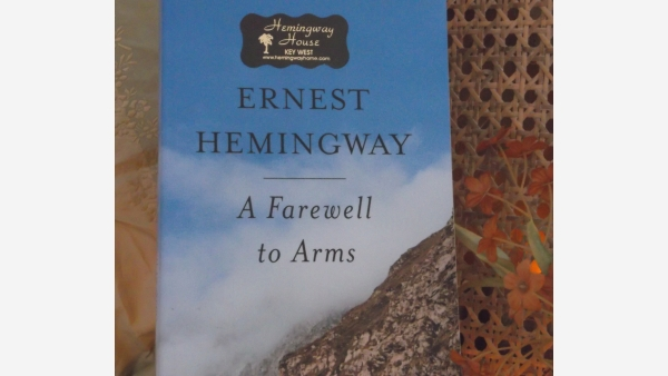 a farewell to arms illuminating incident Four weeks in the trenches  the whole incident had not lasted more than five minutes,  we all wrote what we considered our parting and last farewell,.
