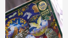 "home-treasures.com - New Jigsaw Puzzle - ""Owl Magic"" - Free Shipping!"