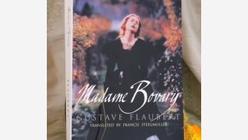 "Flaubert: ""Madame Bovary"" - Handsome Edition - Free Shipping!"