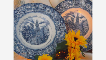 Elegant Staffordshire Soup Bowls - Set of Two - Free Shipping!
