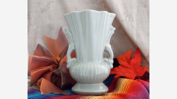 "Mid-Cent. ""Red Wing"" Collectible Vase - Free Shipping!"
