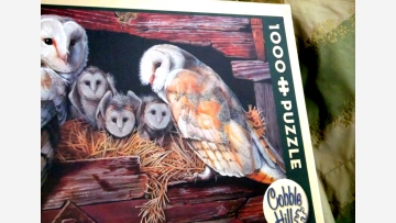 Jigsaw Puzzle - New in Box and a Fine Gift! - Free Shipping!